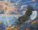 Freedom (Crop) - Cross Stitch Chart