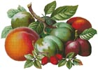 Fruits 2 - Cross Stitch Chart