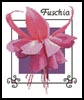 Fuschia 2 - Cross Stitch Chart