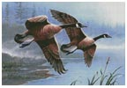 Geese on the Wing - Cross Stitch Chart