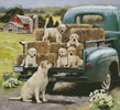 Green Truck Pups - Cross Stitch Chart