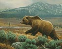 Grizzly (Crop) - Cross Stitch Chart