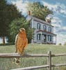 Guardian of the House - Cross Stitch Chart