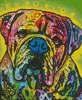 Hey Bulldog - Cross Stitch Chart