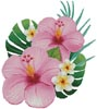 Hibiscus Arrangement 1 - Cross Stitch Chart