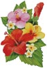 Hibiscus Arrangement 3 - Cross Stitch Chart