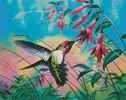 Hummingbird - Cross Stitch Chart