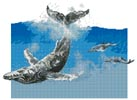 Humpback Whale - Cross Stitch Chart