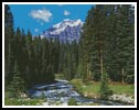 In the Forest - Cross Stitch Chart