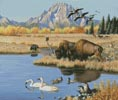Jackson Hole - Cross Stitch Chart