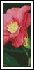 Japanese Camellia Bookmark - Cross Stitch Chart