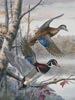 Lakeside Wood Ducks - Cross Stitch Chart