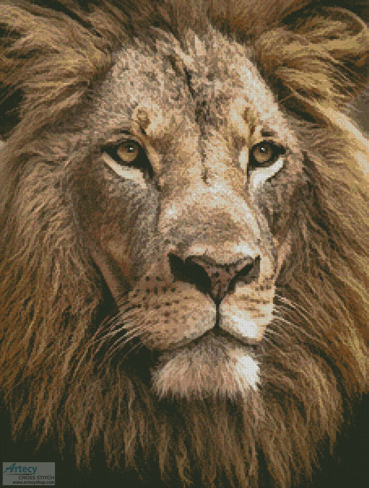 Lion Close up - Cross Stitch Chart - Click Image to Close