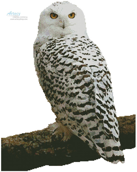 Snowy Owl (No Background) - Cross Stitch Chart - Click Image to Close