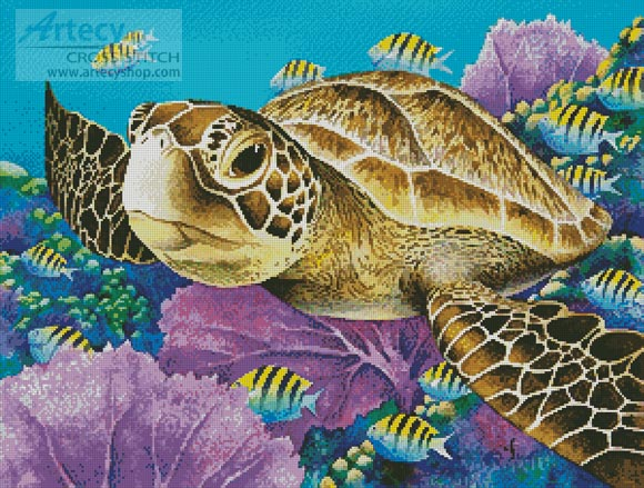 Young Green Sea Turtle - Cross Stitch Chart - Click Image to Close