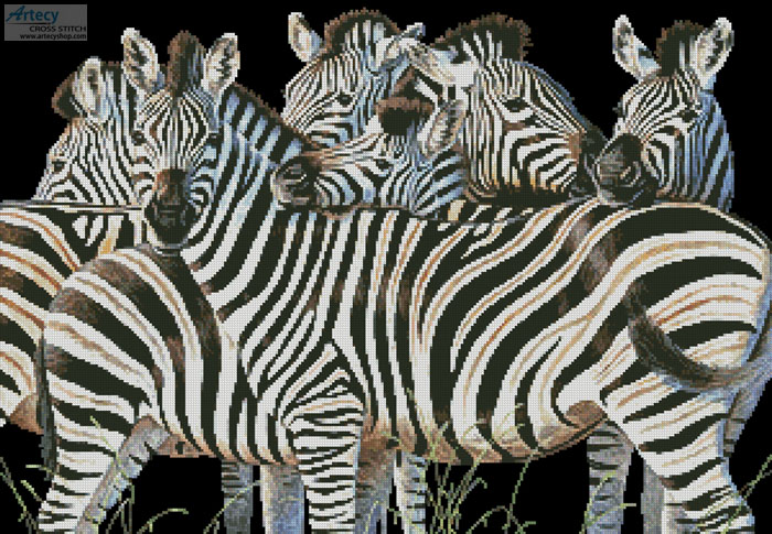 Zebra Huddle - Cross Stitch Chart - Click Image to Close
