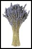 Lavender Bunch - Cross Stitch Chart