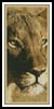 Lioness Bookmark - Cross Stitch Chart