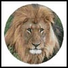Lion Head Circle - Cross Stitch Chart