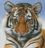 Little Big Cat - Cross Stitch Chart