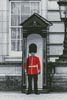 London Grenadier Guard - Cross Stitch Chart