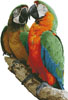 Macaws Photo - Cross Stitch Chart