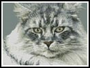 Maine Coon Cat - Cross Stitch Chart