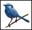 Male Splendid Fairy Wren - Cross Stitch Chart