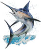 Marlin Painting - Cross Stitch Chart