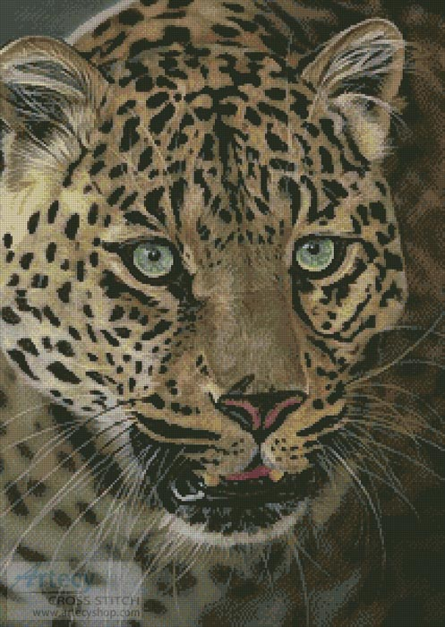 After Dark all Cats are Leopards - Cross Stitch Chart