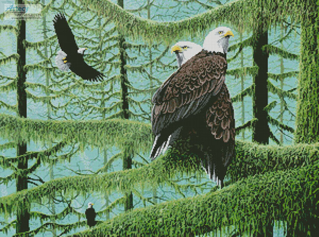 A Gathering of Eagles - Cross Stitch Chart