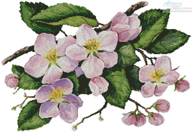 Apple Blossoms Painting - Cross Stitch Chart