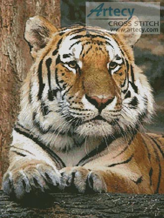Bengal Tiger 4 - Cross Stitch Chart