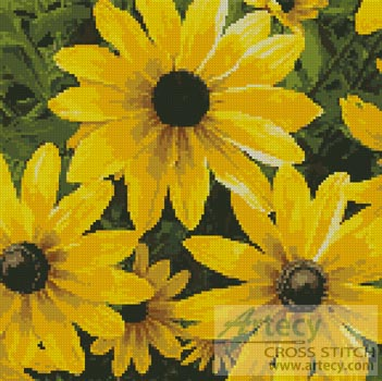 Black-eyed Susan - Cross Stitch Chart