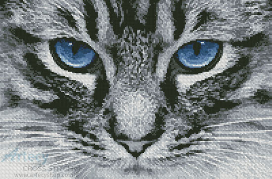 Blue Eyes 2 - Cross Stitch Chart