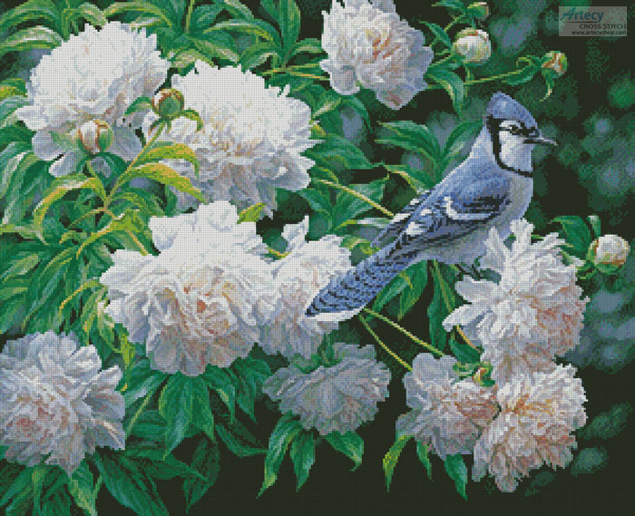 Blue Jay in Peonies - Cross Stitch Chart