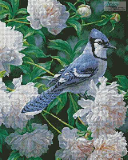 Blue Jay in Peonies (Crop) - Cross Stitch Chart