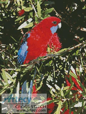 Crimson Rosella - Cross Stitch Chart