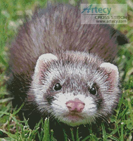 Ferret - Cross Stitch Chart