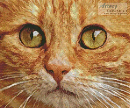 Ginger Cat Close Up - Cross Stitch Chart
