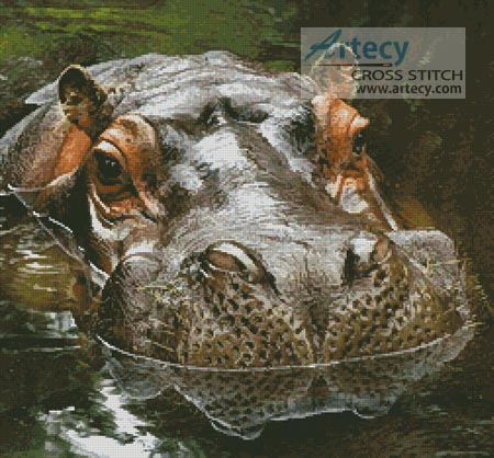 Hippo Reflection - Cross Stitch Chart