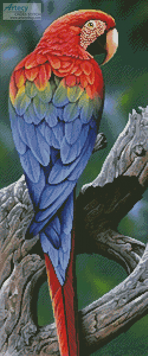 Scarlet Macaw Painting - Cross Stitch Chart