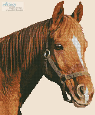 Mini Horse Close Up - (Facebook Group) Cross Stitch Chart