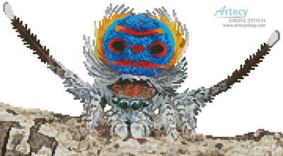 Mini Peacock Spider - Cross Stitch Chart