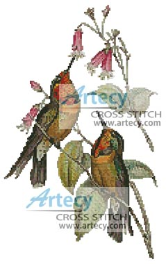 Orange throated sun angel Hummingbirds - Cross Stitch Chart