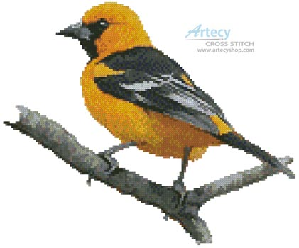 Oriole - Cross Stitch Chart