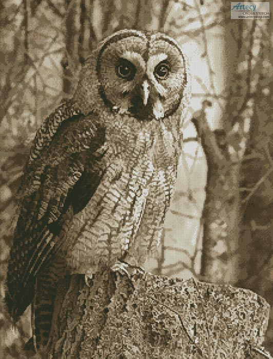 Owl Photo Sepia - Cross Stitch Chart