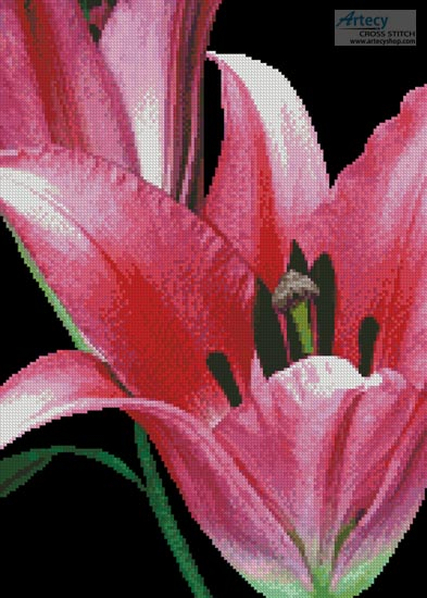 Pink Lily - Cross Stitch Chart