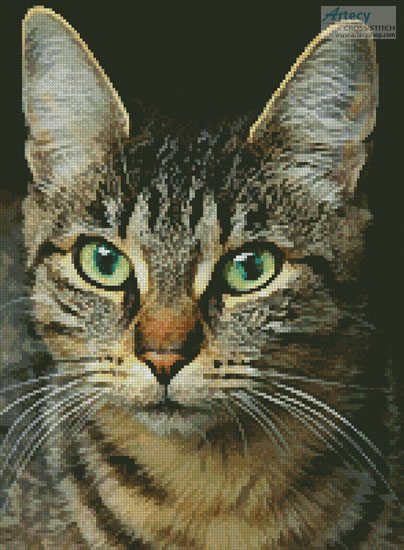 Tabby Close Up - (Facebook Group) Cross Stitch Chart