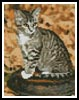 Mini Autumn Kitten - Cross Stitch Chart